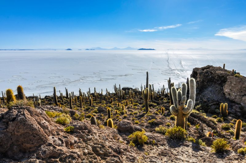Bolivia Salar STNEW 800x531 1