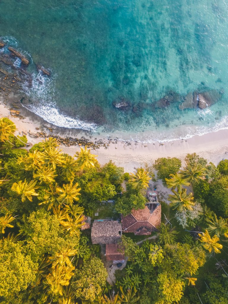 bird eye photogrpahy of beachline beside trees 1078983