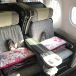 Review: EVA Air Business Class Bali to Taipei A330-300