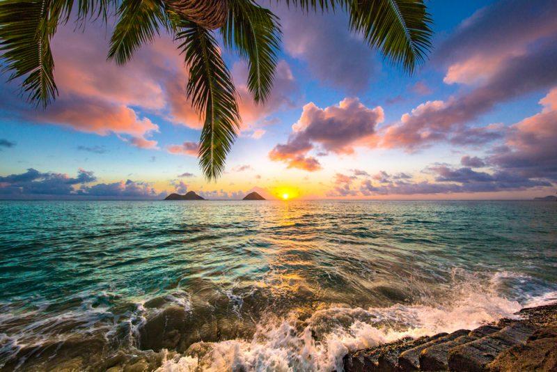 Hawaii ST 800x534 2
