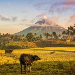 Full-service flights from Amsterdam, Luxembourg or Brussels to the Philippines (Manila, Cebu) from €403!
