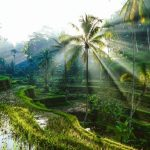 Cheap flights from Oslo to Bali or Jakarta, Indonesia with Air France-KLM from €397!