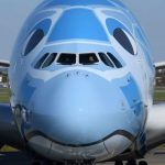 ANA To Fly A Chartered Airbus A380 Sightseeing Flight