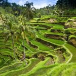 Spring trip to Bali! 10 nights in top-rated 4* hotel with free cancelation + Turkish Airlines flights from Luxembourg or Brussels from €538!