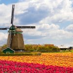 Johannesburg, South Africa to Amsterdam, Netherlands for only $351 USD roundtrip (Jan-Apr dates)
