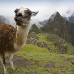 New York to Lima, Peru for only $305 roundtrip (Nov-Feb dates)