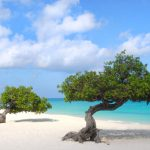 Fort Lauderdale to Aruba for only $177 roundtrip