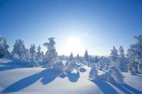 finland 4 200x133 1