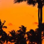 Non-stop from Minneapolis to Fort Lauderdale (& vice versa) for only $96 roundtrip (Jan-May dates)