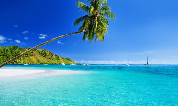 hawaii home2 600x359 1