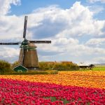 Cape Town, South Africa to Amsterdam, Netherlands for only $384 USD roundtrip