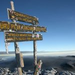 The Baltics to Kilimanjaro, Tanzania from only €372 roundtrip
