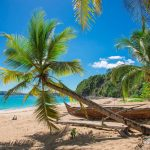 Non-stop from Paris, France to Martinique or Guadeloupe for only €261 roundtrip