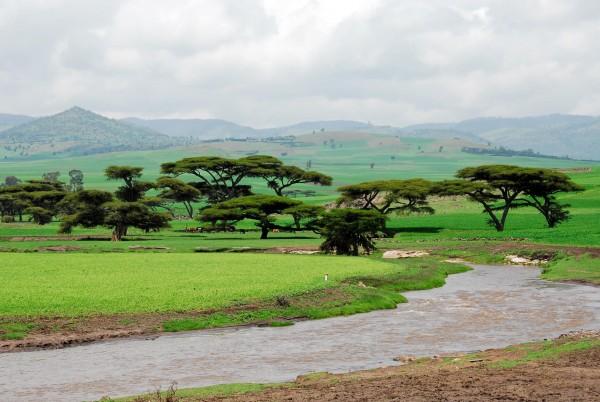 ethiopia 1 600x402 1