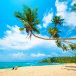 SUMMER: Kiev, Ukraine to Colombo, Sri Lanka for only €385 roundtrip