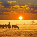 🔥 SUMMER: Toronto or Montreal, Canada to African cities from only $334 CAD roundtrip