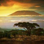 Tallinn, Estonia to Kilimanjaro, Tanzania for only €372 roundtrip