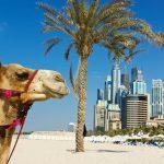 Dallas, Texas to Dubai, UAE for only $655 roundtrip