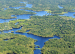 Fort Lauderdale to Manaus, Brazil for only $401 roundtrip