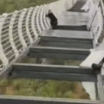 Glass panels on Chinese bridge fall out leaving tourist clinging for life