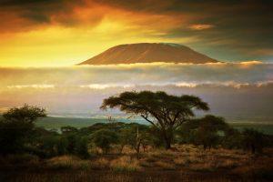 kilimanjaro 4 300x200 1